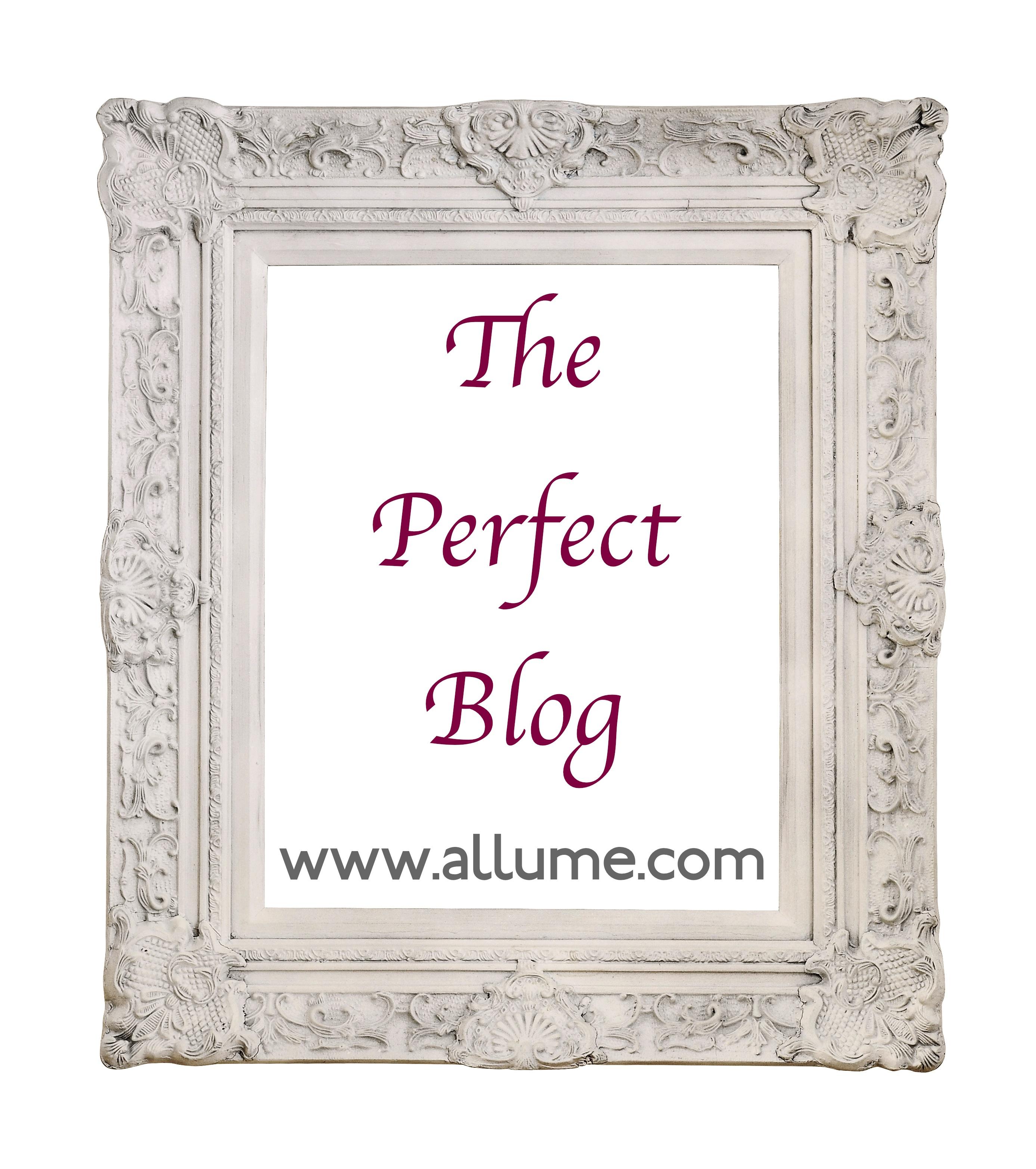 allume graphic - perfect blog